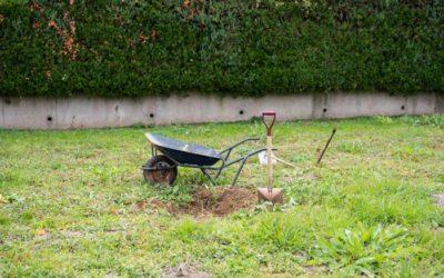 Dig a hole again.